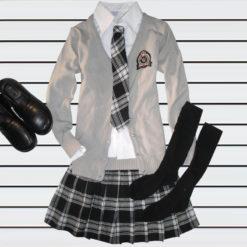На картинке японская школьная форма (Вариант 9), общий вид, с серым свитером.