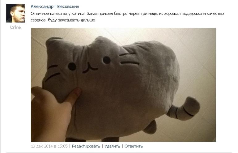 Кот Пушин подушка 2
