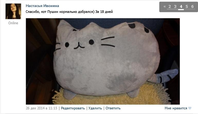 Кот Пушин подушка 3