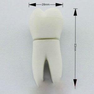 На картинке флешка в виде зуба, общий вид.