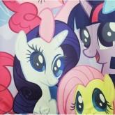 """На картинке свитшот """"Мy little pony"""" (Дружба это чудо), детали."""