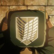 Плащ Атака Титанов (Развед отряд) фото