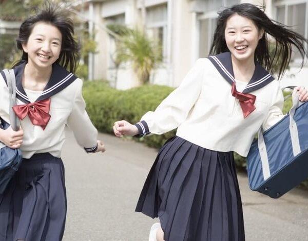 На картинке японская школьная сумка (как в аниме), общий вид.