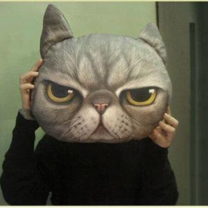 На картинке подушка «Голова кота» (5 вариантов), вид спереди, вариант D.