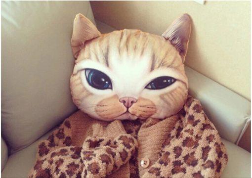 На картинке подушка «Голова кота» (5 вариантов), вид спереди, вариант B.