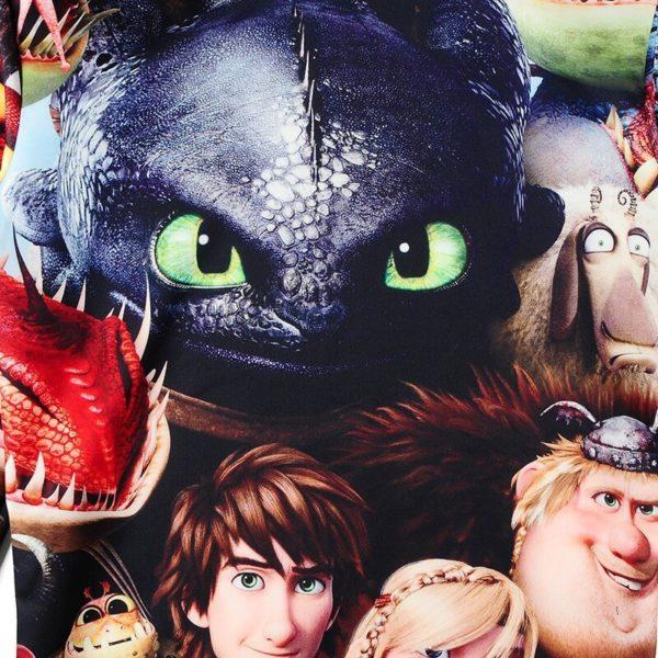 На картинке кофта-свитшот «Как приручить дракона», крупный план.