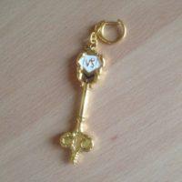 На картинке ключ Козерога (Хвост феи), общий вид.