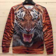 На картинке свитшот с тигром (оранжевый), вид спереди.