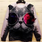 На картинке свитшот кот в очках с принтом космос, вид спереди.