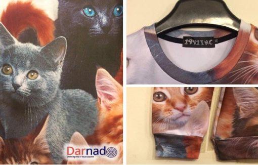 На картинке свитшот с котятами, детали.