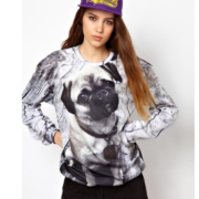 На картинке свитшот с собакой «Мопс», вид спереди.