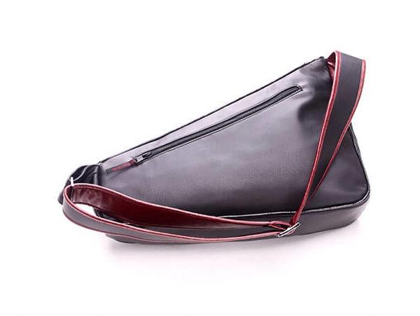 На картинке рюкзак как у Дезмонда Майлза (Ассасин крид), вид сзади.