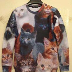 На картинке свитшот с котятами, вид спереди.