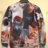 На картинке свитшот с котятами, вид сзади.