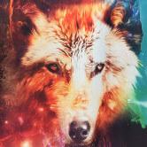 На картинке свитшот с волком и космосом, крупный план.
