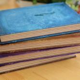 На картинке ежедневник «Дневники вампира», все варианты.