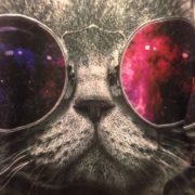 Свитшот кот в очках с принтом космос фото