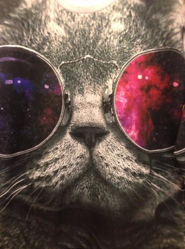 На картинке свитшот кот в очках с принтом космос, крупный план.