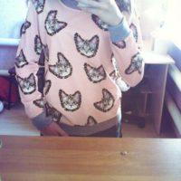 На картинке свитшот с кошкой, вид спереди, цвет розовый.