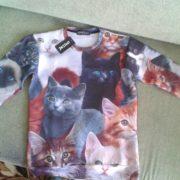 Свитшот с котятами фото