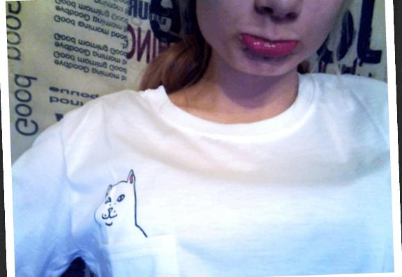 На картинке футболка кот с факом в кармане (2 цвета), детали, цвет белый.