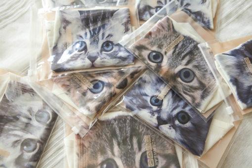 На картинке провокационные женские трусы с кошкой (котом) впереди (3d) 6 вариантов, вид в упаковке.