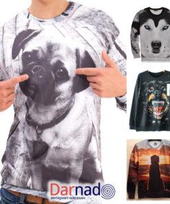 На картинке свитшот с собакой (4 варианта), вид спереди, все варианты.