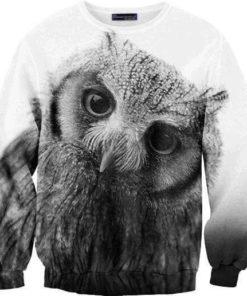 На картинке свитшот с совой, вид спереди.